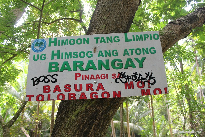 kawasan falls Cebu Philippines -0016