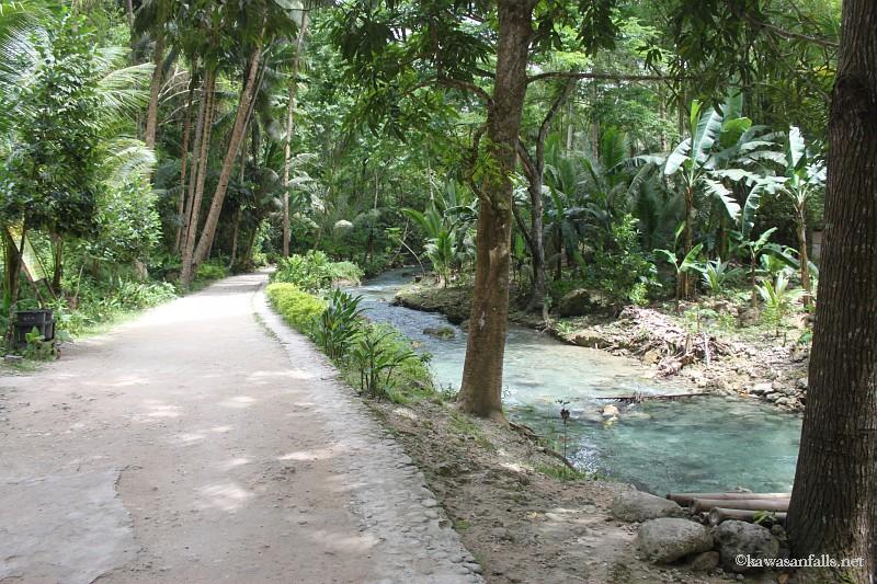 kawasan falls Cebu Philippines -0021
