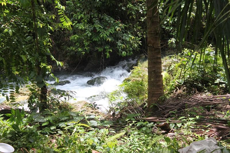 kawasan falls Cebu Philippines -0085