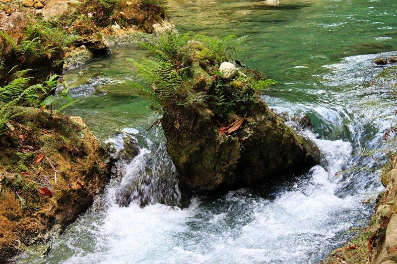 kawasan-falls-cebu-april-2-2010-461