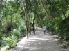 kawasan falls Cebu Philippines -0013