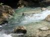 kawasan falls Cebu Philippines -0046
