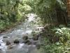 kawasan falls Cebu Philippines -0049