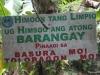 kawasan falls Cebu Philippines -0074