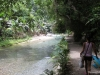 kawasan falls Cebu Philippines -0089
