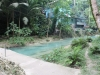 kawasan falls Cebu Philippines -0097