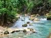 kawasan-falls-cebu-april-2-2010-462