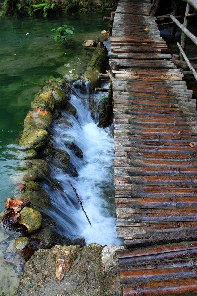 kawasan-falls-cebu-april-2-2010-854