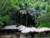 kawasan-falls-cebu-april-2-2010-851