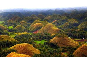 Bohol Hotel Deals - Bohol Tour Package